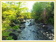 新潟県立烏屋野潟公園,新潟,水遊び,公園