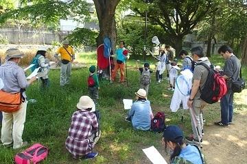 アンリファーブル光が丘公園,昆虫採集,夏休み,東京