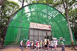 国営備北丘陵公園カブトムシドーム,広島,おすすめ,昆虫観察