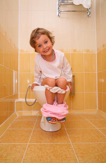 子ども トイレ,トイレトレーニング,補助便座,悩み