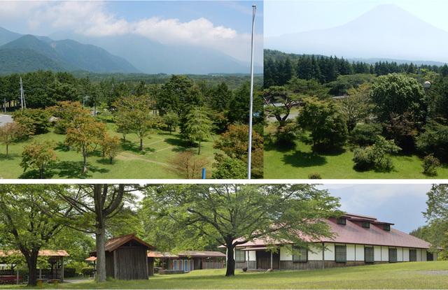 もちやキャンプ場,静岡,キャンプ,おすすめ