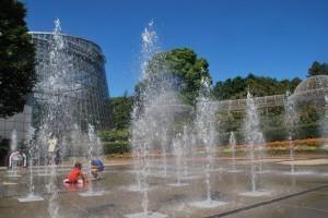 小田原フラワーガーデン,じゃぶじゃぶ池,子ども,公園