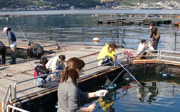 海上釣り堀太公望,静岡,おすすめ,釣り堀
