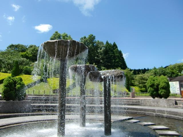 夜須高原記念の森 かたつむり池,福岡県,じゃぶじゃぶ池,公園