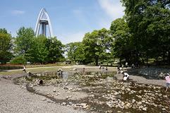 138タワーパーク,愛知県,じゃぶじゃぶ池,おすすめ