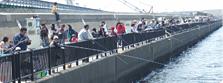 海辺の海釣り客,海釣り,子ども,関東