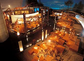 恐竜渓谷ふくい勝山ジオパーク,福井,恐竜,自由研究