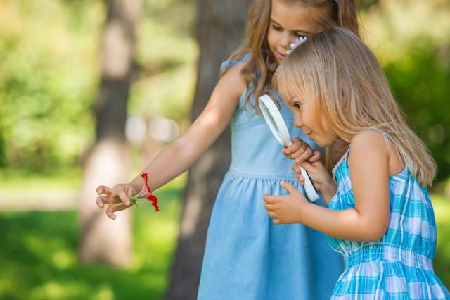 観察する女の子,小学生,夏休み,自由研究