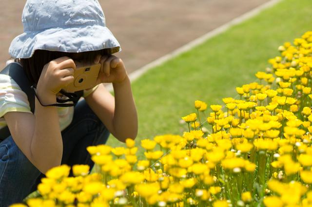 写真を撮る女の子,小学生,夏休み,自由研究