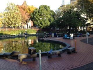 墨田公園釣り場,東京,おすすめ,釣り堀