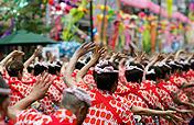 下町七夕まつり,東京,平塚,七夕祭り