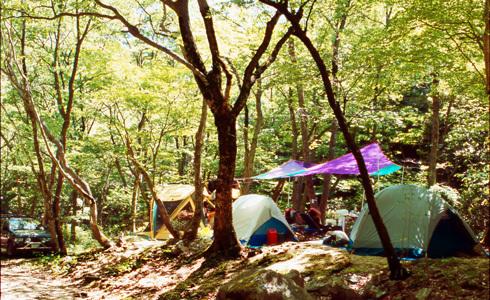吉舎いこいの森キャンプ場,広島県,キャンプ場,自然