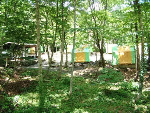 ひろしま県民の森キャンプ場,広島県,キャンプ場,自然