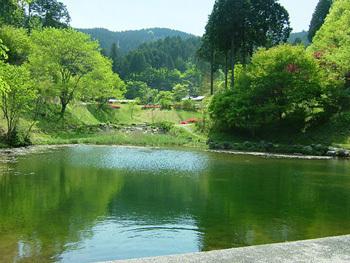 つぐ高原グリーンパーク,愛知県,川遊び,魚つかみ取り