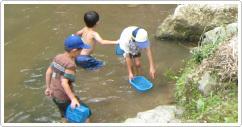山岡果園川遊び,愛知県,川遊び,魚つかみ取り