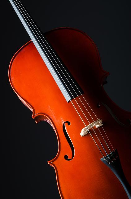 バイオリン,防災,イベント,東京
