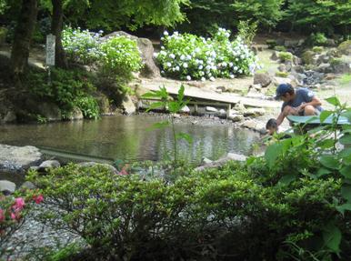 畑宿清流マス釣り場,釣った魚,神奈川,アウトドア