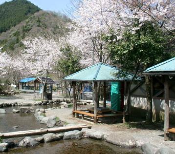 清川リバーランド,釣った魚,神奈川,アウトドア