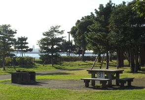 城南島海浜公園,子ども,キャンプ,自然体験