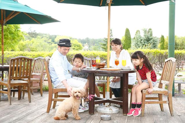 富士すばるランドのレストラン,犬,レンタル,富士すばるランド