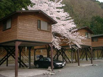 神之川キャンプ場の画像,神奈川,キャンプ場,