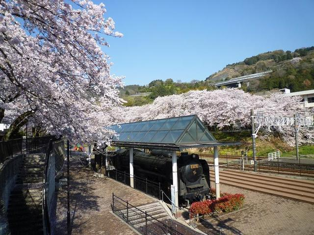 山北鉄道公園,神奈川県,観光,名所