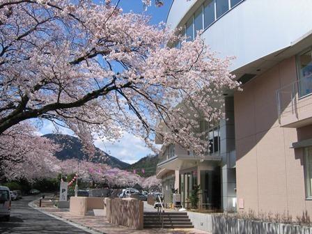 さくらの湯,神奈川県,観光,名所