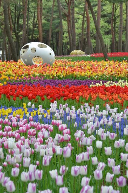 たまごのオブジェ,外遊び,ひたち海浜公園,茨城