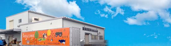ヤスダヨーグルト工場見学,新潟,工場見学,人気