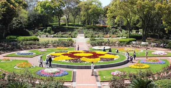 福岡市植物園,福岡県,子どもの写真,植物園