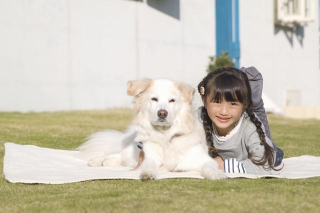 白い犬と女の子,新富士オートキャンプ場,