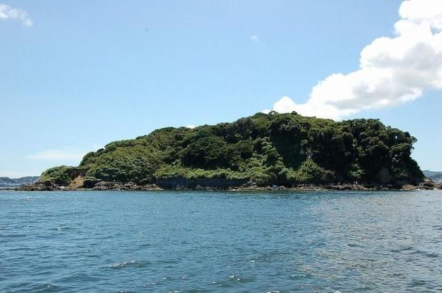 猿島,横須賀,観光,おすすめ