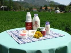 ともにこの森「清里ミルクプラント」の牛乳,山梨,工場見学,