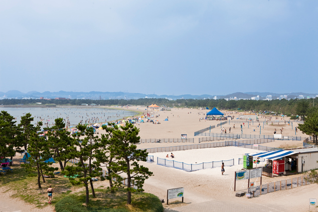 海の公園海水浴場,横浜,海の公園,海水浴