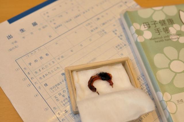 出生届と母子手帳,里帰り出産 ,出産準備 ,手続き