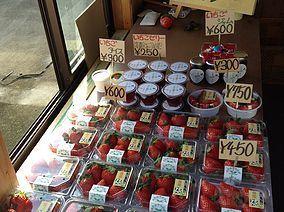 直売所で購入できる美味しいお土産,いちご狩り,東京,世田谷いちご熟