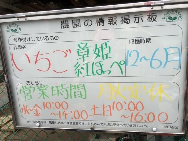 農園の情報,いちご狩り,東京,世田谷いちご熟