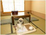 湯遊び処 箱根の湯 休憩ルーム,箱根,日帰り温泉,貸切