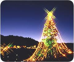 宮ヶ瀬 クリスマスツリー,宮ヶ瀬,クリスマス,イルミネーション