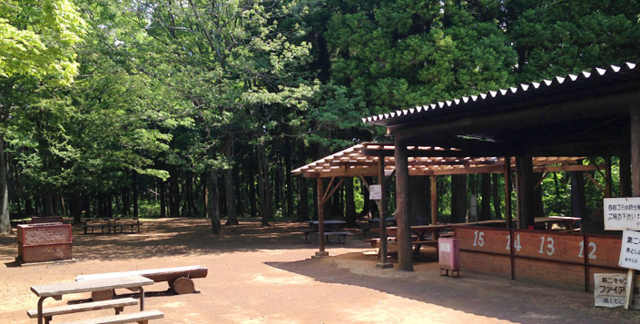 フォレストビレッジ,千葉市,昭和の森公園,おすすめ