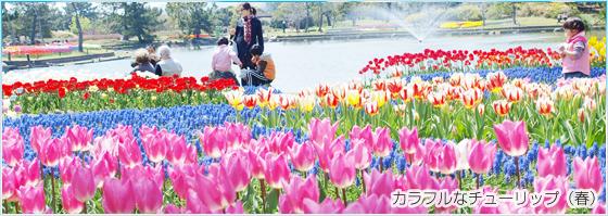 バラ園,福岡,遊べる,公園