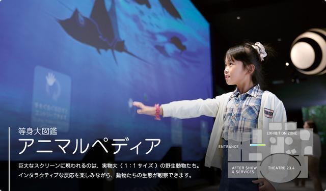 オービィ横浜 アニマルペディア,みなとみらい,オービィ,子ども