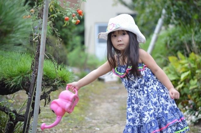 水やりをする子ども,野菜,栽培,簡単
