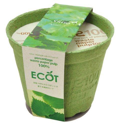 エコットM 青ジソ ,野菜,栽培,簡単