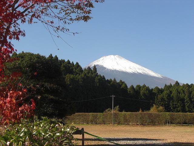 キャンプ場から見える富士山,御殿場,キャンプ場,コテージ