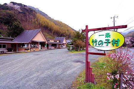 一条竹の子村,伊豆,たけのこ狩り,一条竹の子村