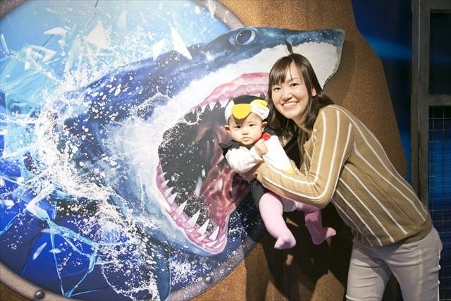 海遊館の特別展示,親子,撮影会,イベント