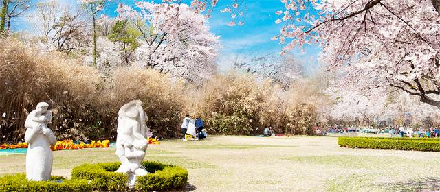 オリニ大公園,韓国,旅行,子連れ
