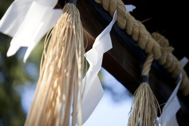 紙垂,大阪,お宮参り,神社
