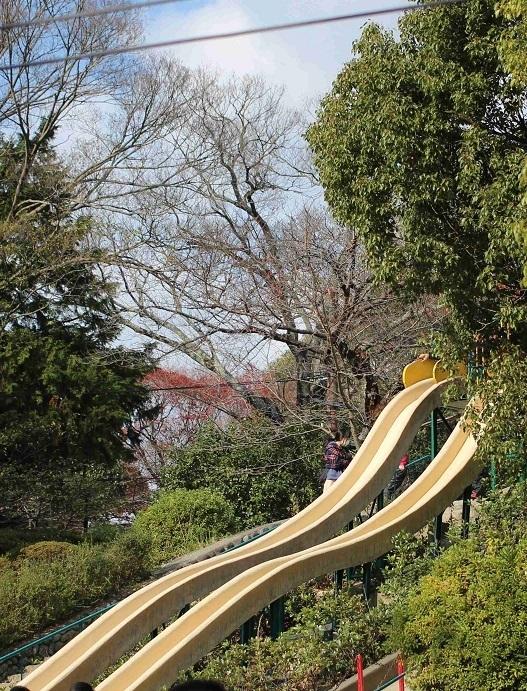 滑り台,五月山公園,無料,子連れ